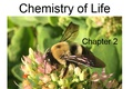 Chapter 2 - Chemistry of Life