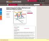 Global Enterprise for Micro-Mechanics and Molecular Medicine (GEM4), Summer 2006