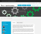 Business Model Testing