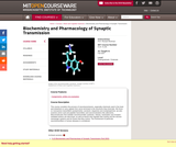 Biochemistry and Pharmacology of Synaptic Transmission, Fall 2007