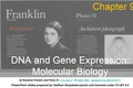 Chapter 9 - DNA and Gene Expression: Molecular Biology