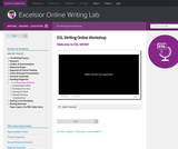 ESL Writing Online Workshop